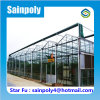 Most Popular Modern Glass Greenhouse for Sale