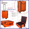 Luxury Luggage Suitcase with Trolley (6445)