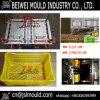 Premium Customized 2 Cavity Plastic Fruit Crate Mold