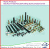Anchor Bolt/Stud Bolt/U-Bolt/Nut/Bolt/Screw/Flat Washer/Flange Nut Made in China
