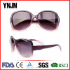 Promotion Plastic Sun Shades Eyewear Sunglasses for Women (YJ-S057)