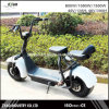 Electric City Scooter Scrooser City Motor Cycle Mobility Vehicle off Road Disk Brake City Coco Scooter
