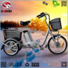 250W 3 Wheel Electric Bike Cargo Tricycle for The Elderly