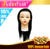 Training Mannequin Head, Hairdressing Practice Head Human Remy Hair Lbh 034