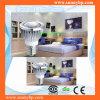 High Lumen COB LED Spotlight