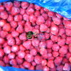 New Crop of IQF Frozen Strawberries