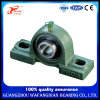 Japan Famous Brand NTN Bearing Pillow Block Bearing Ucp204