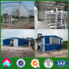 Angola Poultry Farm Chicken Shed Project (XGZ-PH009)