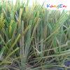 Tencate Thiolon Grass and Synthetic Grass for Garden