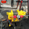 Customized 1ton Air Winch with Competitive Price