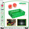 Turnover Tote Bin Collapsing Vegetable Plastic Folding Crate