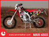 450cc Adult Motorbike