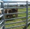 Livestock Panels Powder Coated, Cattle Yard Australia