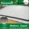 Long Lasting Mattress Continuous Spring Home Play Mattress Pillow Top Style Cheap Price