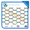 Galvanized Chicken Wire Mesh/Hexagonal Wire Netting