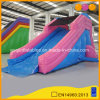 Cheap Price Inflatable Slide Wet and Dry Slide Inflatable Water Slide for Kids (AQ10100-2)