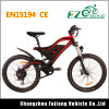 Electric Mountain Bike with Double Shoulder Front Fork