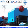 Horizontal Automatic Single Drum Coal Fired Steam Boiler (DZL)