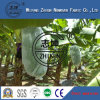 PP Nonwoven Fabric for Fruit Cover with High Quality