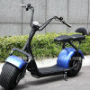 Fat Tire Two Wheel Electric Scooter with Double Seats