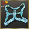 New Custom Fashion Heat Transfers Collars for Dog