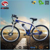 Front Motor Suspension Bike Electric Mountain Bicycle Quick Release