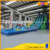 2 in 1 Giant Inflatable Water Slide Game (AQ01261)