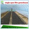 Hot Sale PE Film Agriculture Greenhouse