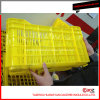 Hot Selling/Durable Plastic Vegetable Crate Mold