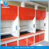 Customized Chemical Fume Hood with Base Cabinet