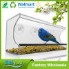 Clear Large Different Shape Acrylic Window Bird Feeder