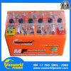 Free Maintencance Type 12V 6ah Electric Motorcycle Battery
