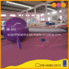 Advertising Inflatable Pin Model for Show (AQ54319)