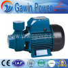 Low Price Qb Series Water Pump with 1.5HP Pedro