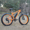 26inch Fat Tire Ebike Mountain E Bike