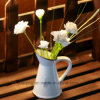Flower Pots/Watering Can in Different Colors