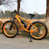 Fat Mountain E Bike with En15194