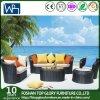 New Design Balcony Sofa Set Rattan Furniture Outdoor Furniture Sofa (TG-040)