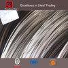 SUS304 316 301 Stainless Steel Wire Galvanized Iron Wire (CZ-W37)