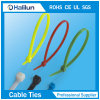 Heat-Resisting Nylon Cable Tie with White and Black