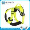 Different Colors Fashion Belt Pet Dog Leash