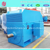 Yrkk IC616 Three-Phase Silp Ring Wound Rotor Induction Motor