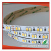 CCT Adjustable Samsung SMD 5630 LED Strip