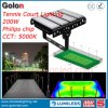 LED Light 200W for Paddle Tennis Court 5 Years Warranty 400W 300W 150W LED Tennis Court Flood Lighting