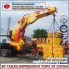 Custimized Hydraulic Cylinder for Lifting Crane