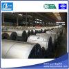 Sgcg Galvanized Steel Sheet in Coils