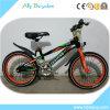Children Sports Cycle/Kids Sports Bike/Manual Bicycle
