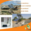 DC Solar Water Pump with 5-100m Height