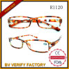 Fashion Chinese Wholesale Reading Glasses R1120