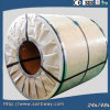 Colorful PPGI Prepainted Galvanized Steel Coil